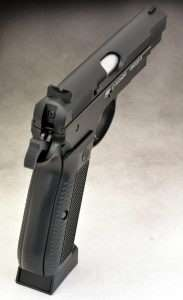 The fixed sights are similar to the CZ-75 but do not have white dots. The front ramp has a non-reflective serrated edge.