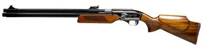 Dragon Claw Air Rifle