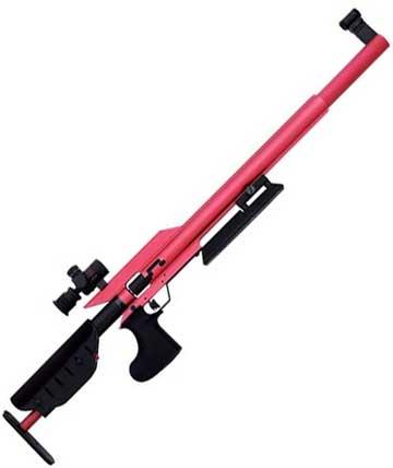 10-meter rifle – Part 2 The budget rifles | Air gun blog - Pyramyd