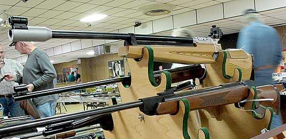 FWB 601 and 350 Magnum