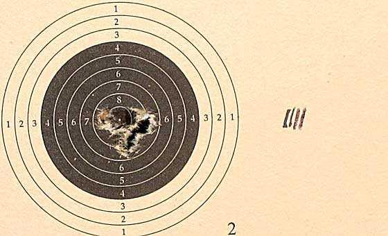 10 shot test target3