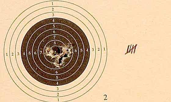 10 shot test target4