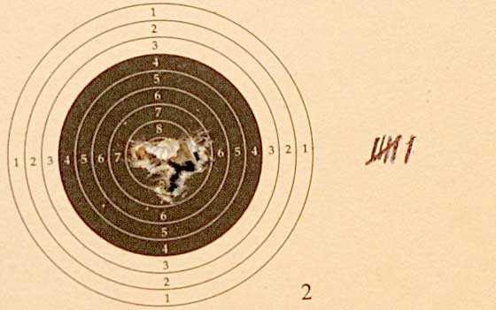10 shot test target5
