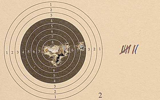 10 shot test target6