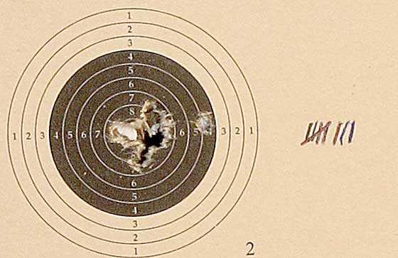 10 shot test target7