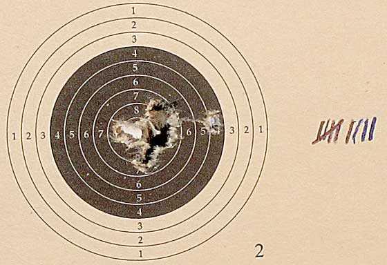 10 shot test target8