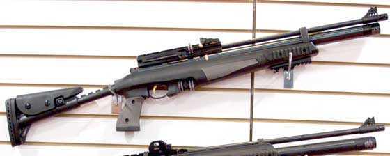 AR44-10-TACT rifle