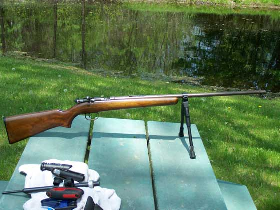 Remington 514 rifle