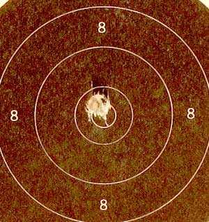Benjamin Trail NP pistol Penetrator first shot