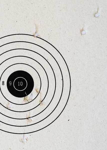 Crosman M1 Carbine Avanti Precision Ground shot target