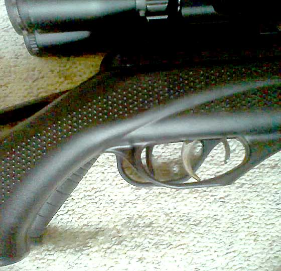 Benjamin NP Limited Edition on Ruger Blackhawk Elite