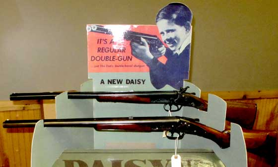 Daisy double barrel display