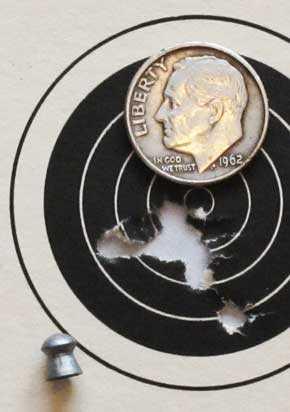 El Gamo 300 Falcon target