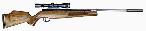 Beeman Crow Magnum