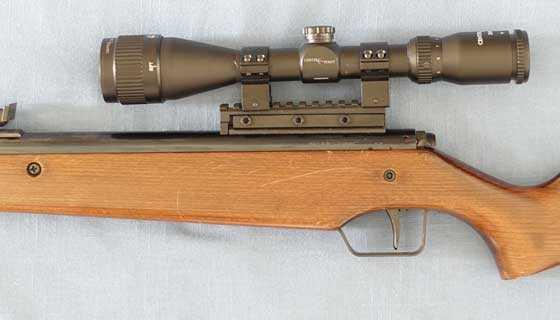 RWS Diana 45 scoped