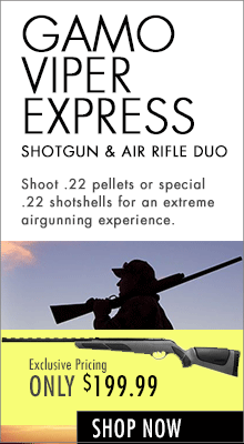 Gamo Viper Express air shotgun & air rifle