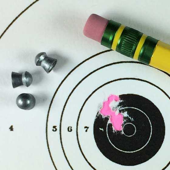 Air Arms Falcon target