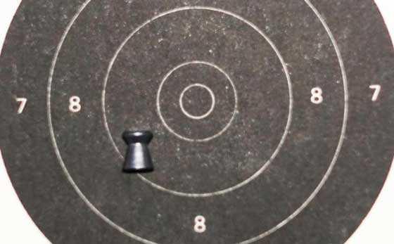 10 meter pistol target