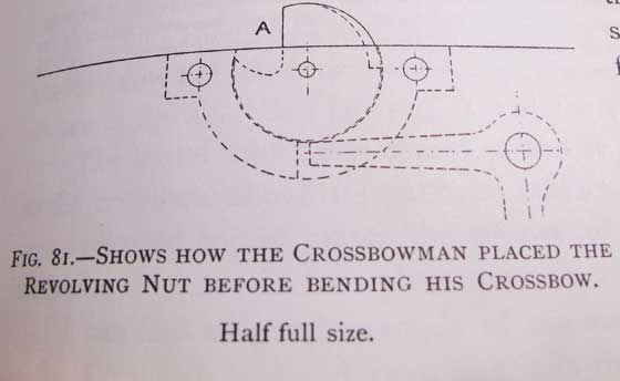 crossbow nut