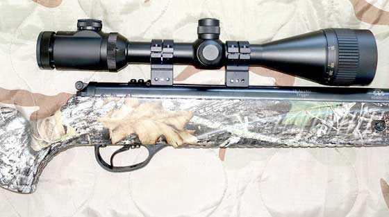Hatsan 85 scope