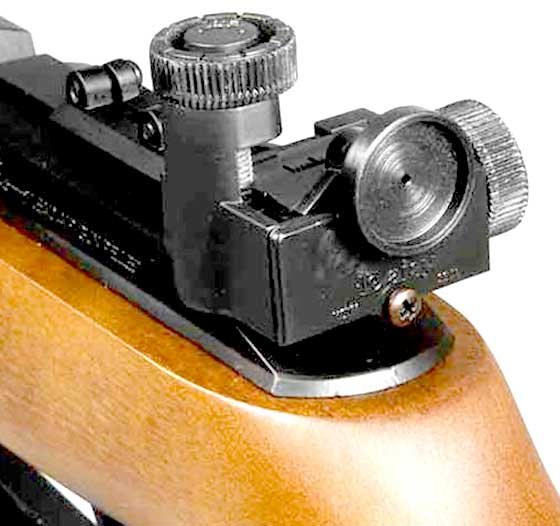 Daisy 853 rear sight