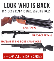 Big Bore Airguns