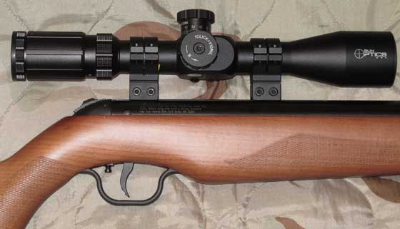 Walther Parrus with wood stock scoped
