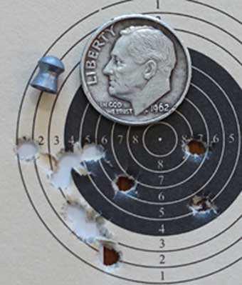 Benjamin Wildfire Falcon target