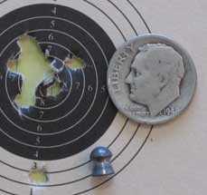 Crosman Premier lite target