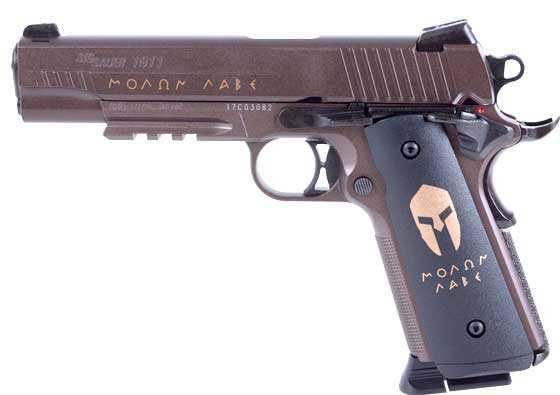 Sig Spartan BB pistol