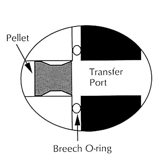 transfer port detail