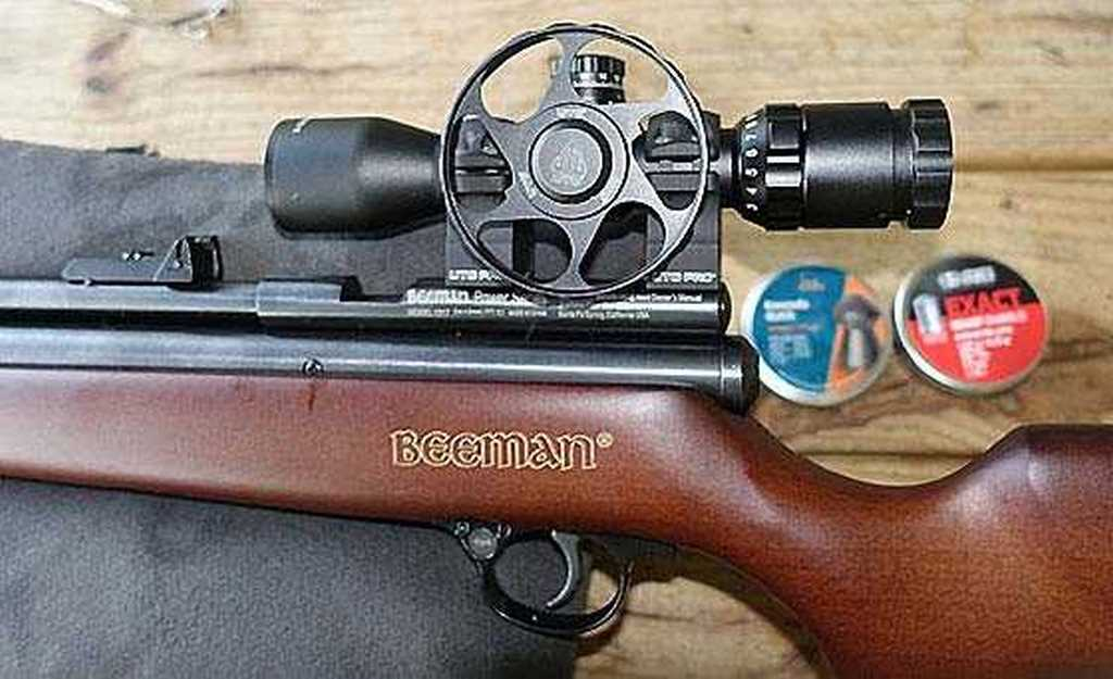 Beeman PCP scoped