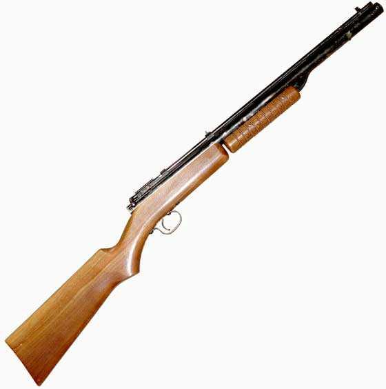 Benjamin 310 BB gun: Part 1 | Air gun blog - Pyramyd Air Report