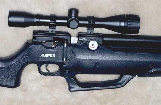 Seneca Aspen PCP scoped