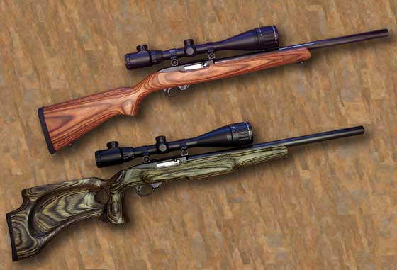 Ruger 10/22 two rifles