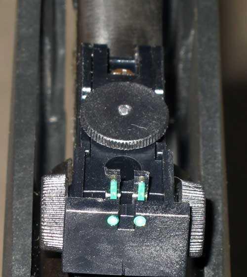 Stoeger S4000E rear sight