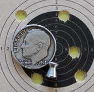 TR5 Target Pro Sig