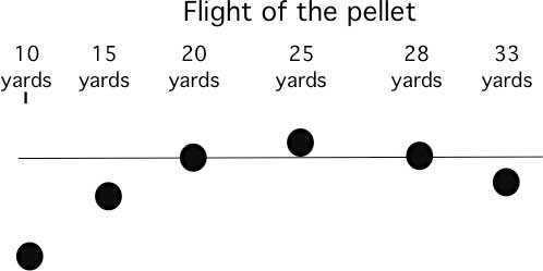 Pellet flight