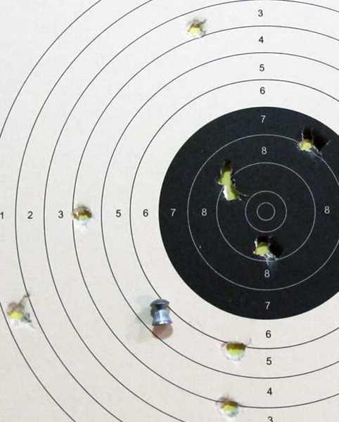 Diana Bandit Superdome target