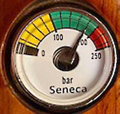 Seneca gauge 1