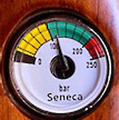 Seneca Gauge 2