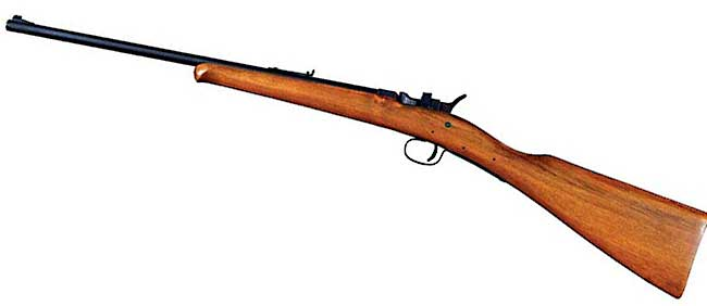 RMAC 22 rifle
