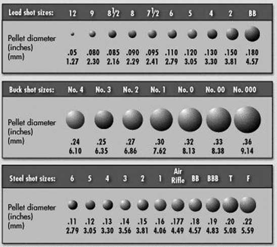 RMAC shot sizes