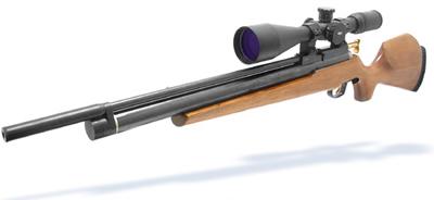 BAM B-50 Air Rifle