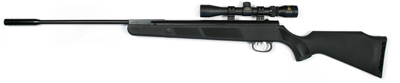 Beeman Panther Air Rifle, RS2 Trigger