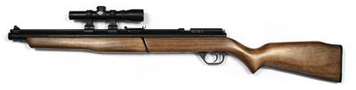 Benjamin 392 Combo, 2x20mm Scope