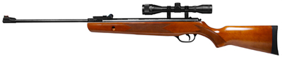 Winchester 1028 Air Rifle Combo