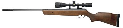 Gamo Hunter 890S.