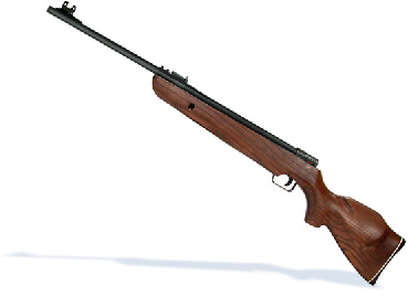 Mendoza RM-10