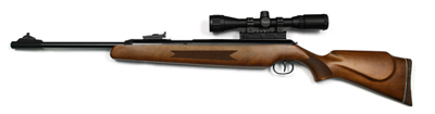 Diana RWS 52 Striker Combo